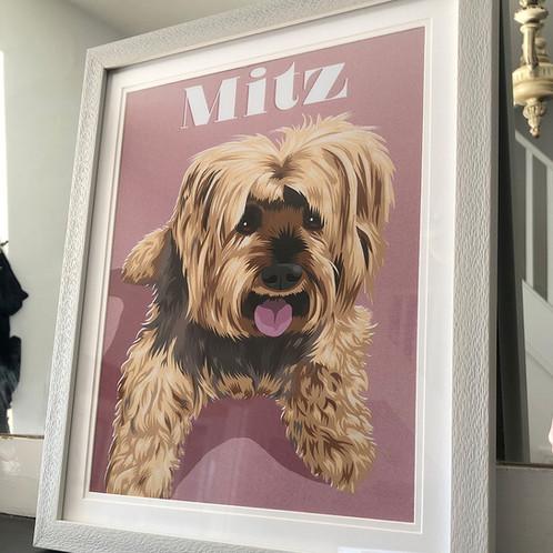 Mitz.jpg