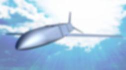 flying_small.jpg