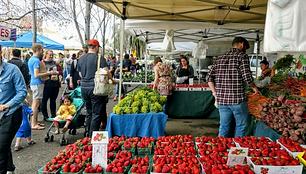 Grand Lake Farmers Market in Oakland