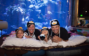Penguins & Pajamas at the Museum