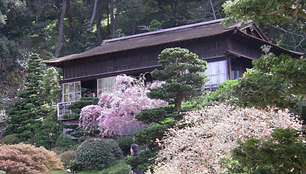 Rinzai Zen Study at Hakone Gardens