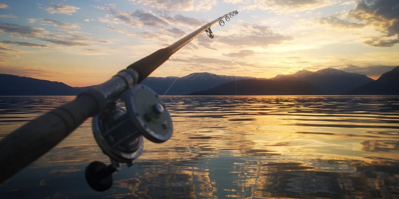 Fishing in the fjord.jpg