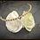Thumbnail: Swarovski Champagne Golden Goddess Headband