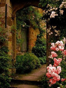 autumn roses  (15).jpg