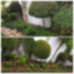 PicsArt_11-23-08.57.07.jpg