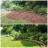 PicsArt_11-23-09.07.28.jpg