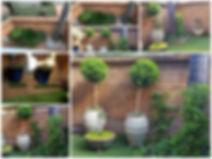 PicsArt_04-17-12.17.26.jpg