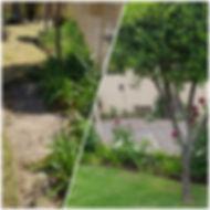 PicsArt_05-01-03.49.12.jpg