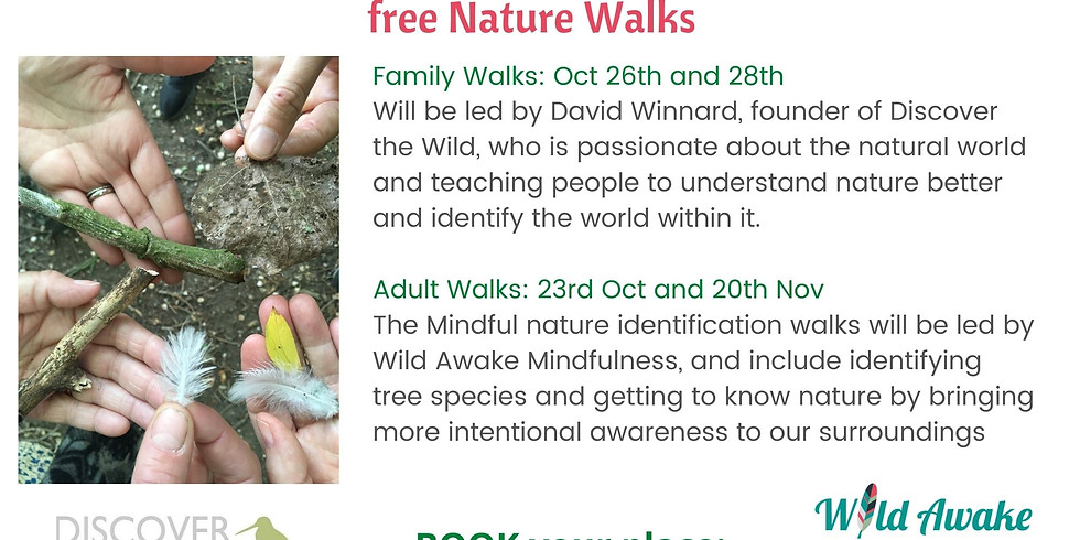 Free Nature walks for Adults and Families: Highfield Country Park