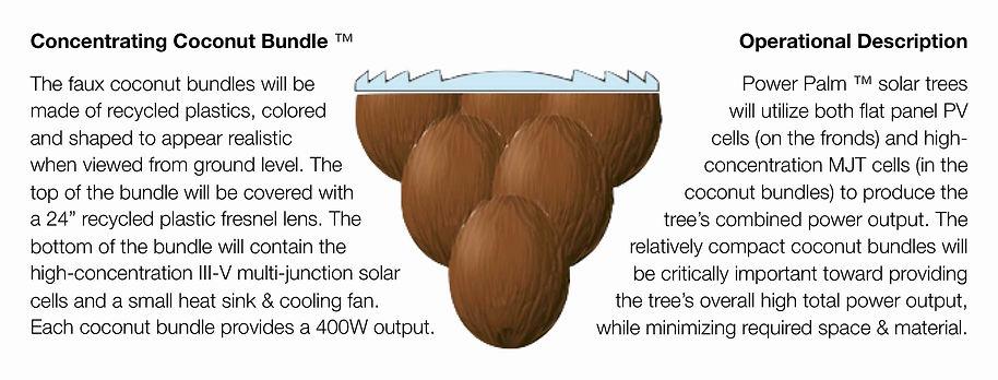 Concentrating Coconut description, Wide.