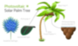 Solar Tree Design Elements.jpg