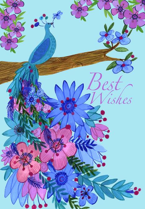 Peacock Flowers - Kay Widdowson.jpg