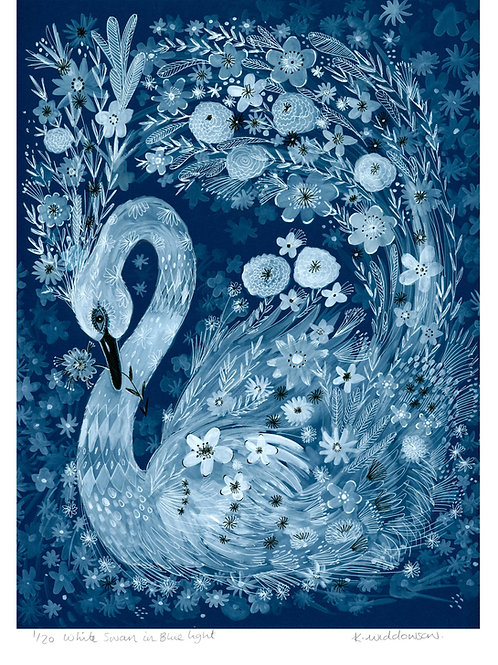 White Swan in Moonlight - Limited Edition Colour Print