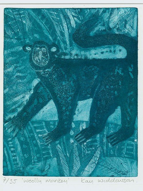 Woolly Monkey - Aquatint and Drypoint Etching