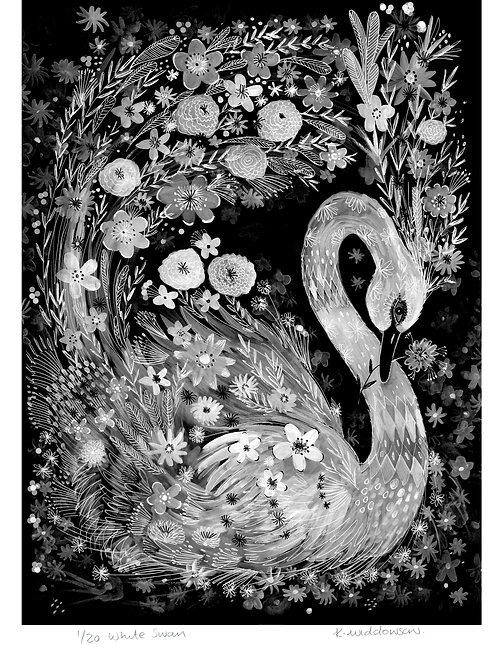 White Swan - Limited Edition Colour Print