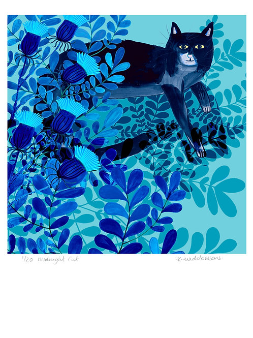 Midnight Cat - Limited Edition Colour Print