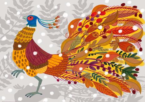 Pheasant - Kay Widdowson.jpg