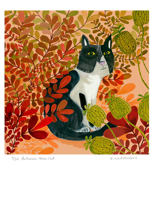 Autumn Tom Cat - Limited Edition Colour Print