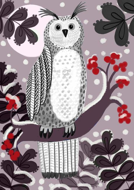 Christmas Owl - Kay Widdowson.jpg