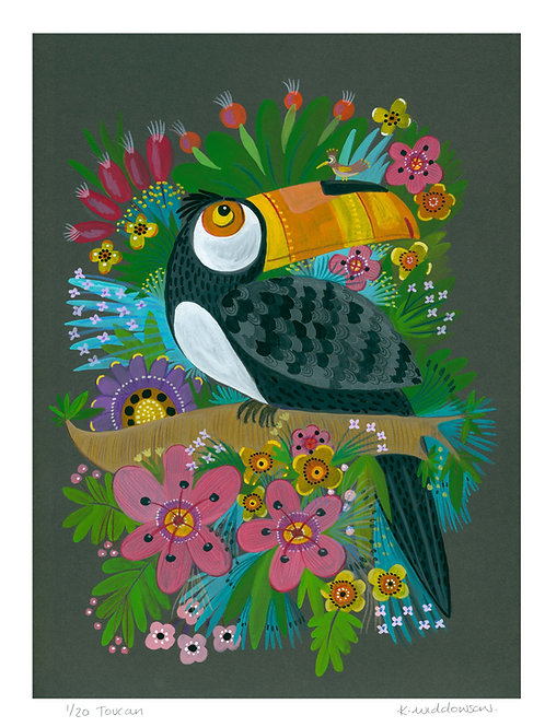 Toucan - Limited Edition Colour Print