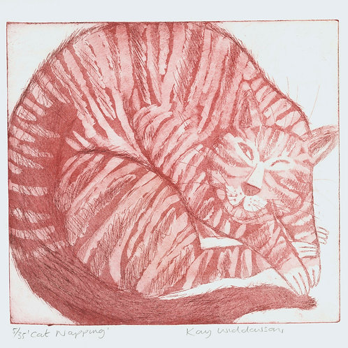 Cat Napping - Aquatint and Drypoint Etching