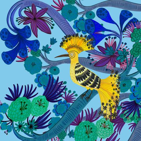 Hoopoe Bird - Kay Widdowson.jpg