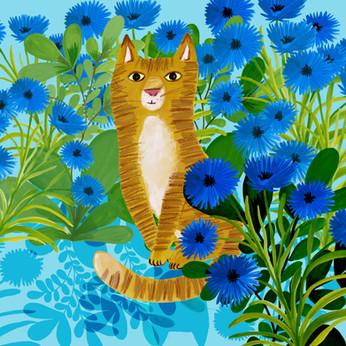 Cornflower cat - Kay Widdowson.jpg