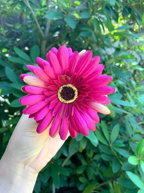 Vlásenka Tmavě Růžová Gerbera