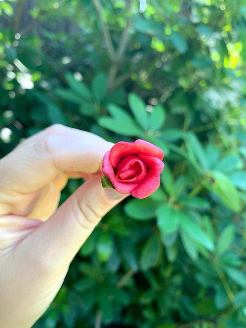 Vlásenka Malá Červená Růžička
