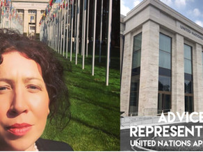 United Nations Complaints for wrongful imprisonment, arbitrary detention and human rights violations