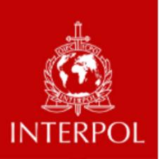 Interpol Abuse