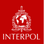 Stirling talks to TRT World on Interpol's credibility