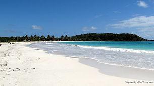Vieques : beach .jpg