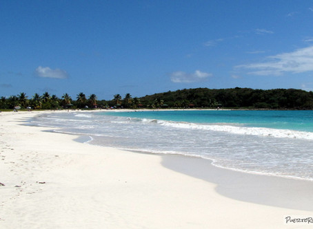 The best places to visit in Vieques: