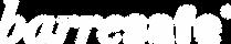 Barre Safe Logo WEB 4.png