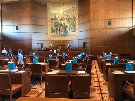 Gift bags in Senate Chamber.JPG