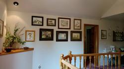 Gallery of Watercolor paintings