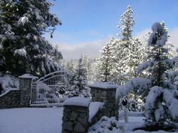 Welcoming Winter
