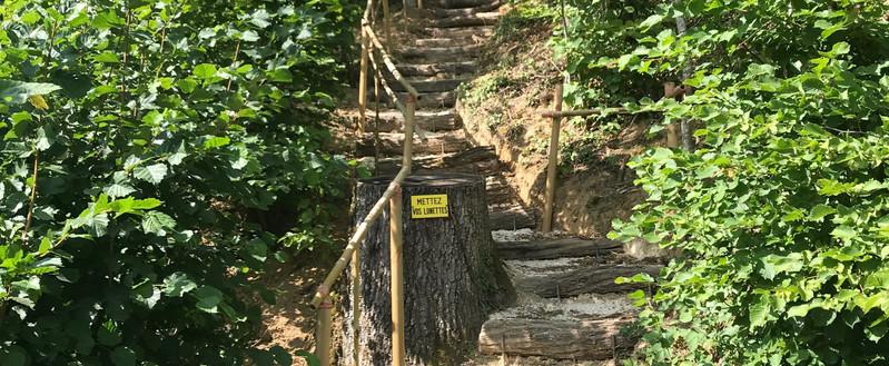 l'escalier menant à l'ancienne carrière