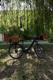 vélo électrique Scott Domaine de l'Ocrer