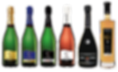 collection champagne daniel gerbaux.png