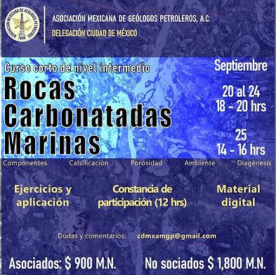 Curso virtual: Rocas Carbonatadas Marinas, Nivel intermedio, 12 hrs