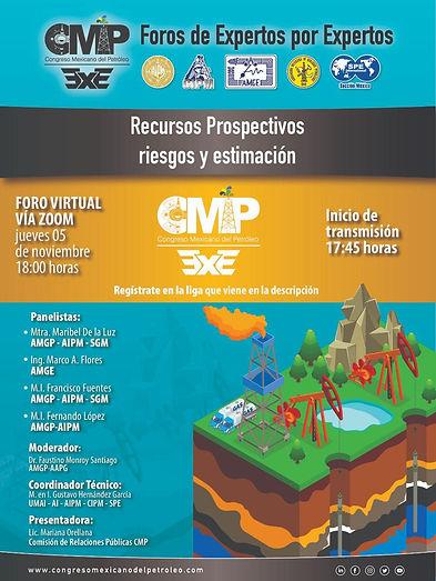 Recursos Prospectivos: riesgos y estimación