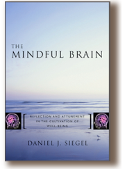 cover_MINDFUL_BRAIN.png