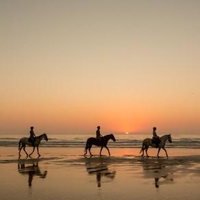HORSE RIDING – PASSEIOS A CAVALO