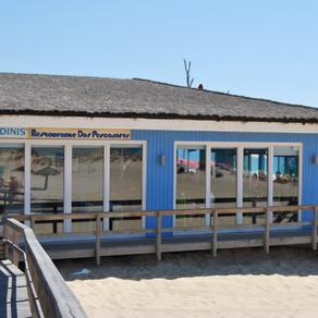 O DINIS |Praia Carvalhal|30m