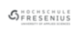 HSF-Logo_Redraft_09_Grau_transparent.png