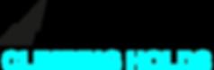Fiction Bestelliste Orderlist Illusion Climbing Holds Volumes Volumen Klettergriffe Overcome Gravity Manuel Mast Online Shop Routenbau Routesetting Tirol HRT Fiction xcult rockcity