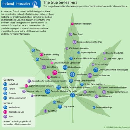 The cannabis money tree