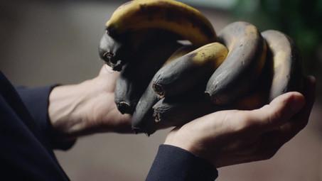 GRUNDING Massimo Bottura